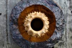 Pippy oak combo